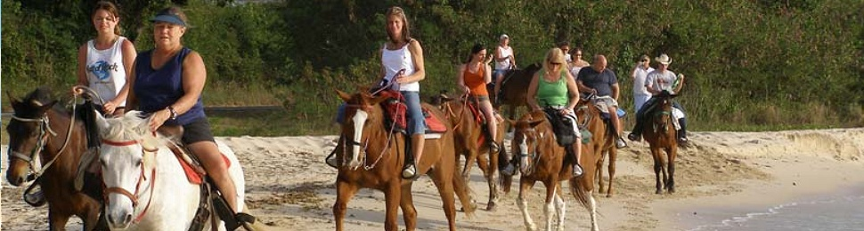 horseback riding in st. croix